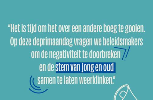 Vlaamse Ouderenraad website